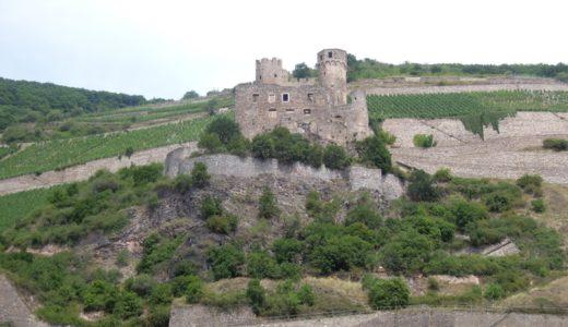 古城を眺めながらのライン川クルーズ、オススメコースをご紹介!【2017年7月・ドイツ-フランス旅行】8