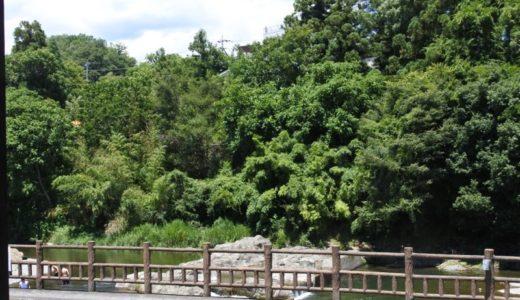 【武蔵五日市・イタリアン】cafe-dining Kan-KURA 〜秋川の四季を眺めながらのパスタランチが楽しめる!